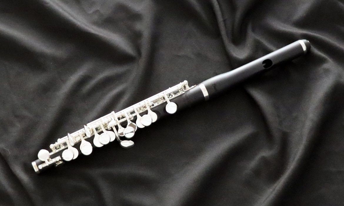 Get introduced to the musical instrument: piccolo